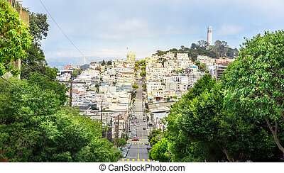 Road with trees and buildings at San Francisco - Road with...