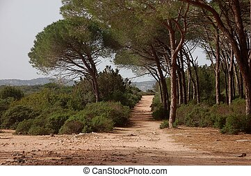 roads on the island of Caprera