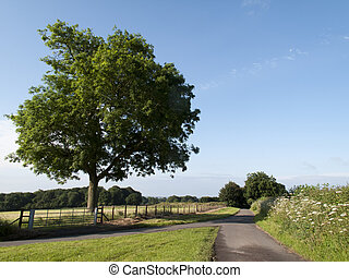 Roads cutting through early morning British countryside farmland