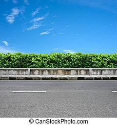 Roadside and pavement