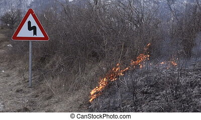 roadside bushes are burning, slow motion