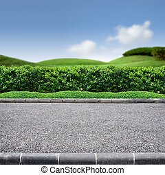 Roadside view of grass lanscape