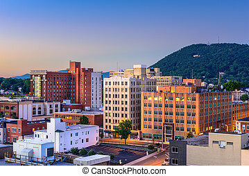 Roanoke Virginia Cityscape