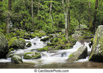 Roaring Fork Creek in the Great Smoky Mountains USA -...