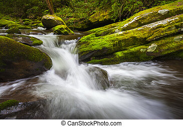 Roaring Fork Great Smoky Mountains National Park Cascade Gatlinburg TN waterfalls in lush green foliage