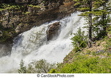 Roaring Waterfalls - The high level of water flow floods out...