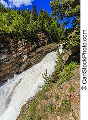 Roaring Waterfalls