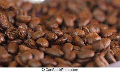 Roasted Coffee Beans - Coffee beans falling closeup shot