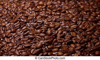 Roasted coffee beans floating in water, super slow motion shot