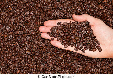 Roasted coffee beans on a hand