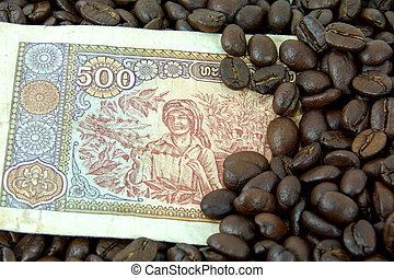 roasted coffee beans on money background.