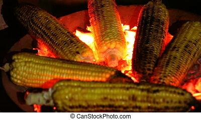 Roasted corn on the coals in the dark closeup