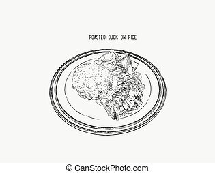 roasted duck with rice, Thai food, Chinese food. hand draw sketch vector.