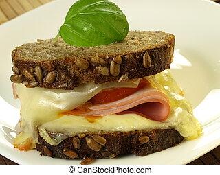 Roasted sandwich, closeup