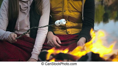 Roasting Marshmallows - Cropped unrecognizable couple...