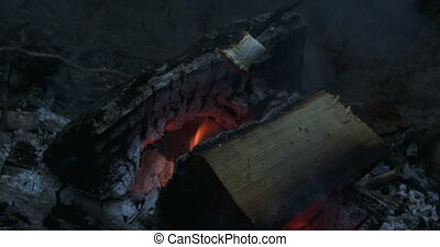 Roasting marshmallows on fire