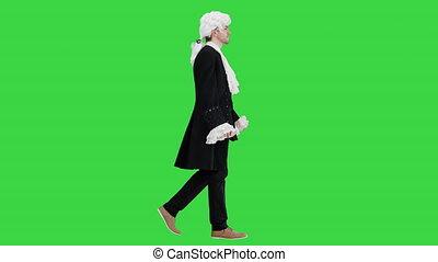robe, manteau, marche, vert, écran, regarder, mannered, chroma, homme appareil-photo, key., manière, blanc, lacé, démodé, perruque