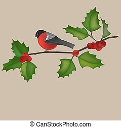 Robin and a holly tree branch