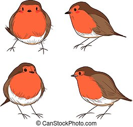 Robin Bird Color Set - Set of different hand drawn color...