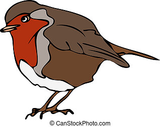 Robin Bird Isolated Vector Drawing - Isolated vector hand...