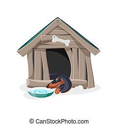 robiony, stary, zniszczony, dom, drewno, pies, zrujnowany, dom