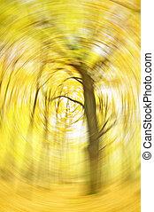roble, en, bosque de otoño