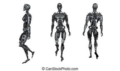 Robot - 3D CG rendering of robot
