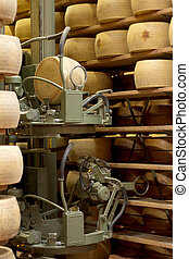 robot in a maturing storehouse of Parmesan cheese
