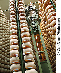 robot in the aisles of a dairy factory
