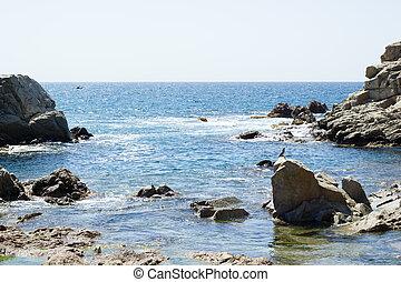 rocas, mar, ondas