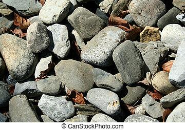 rocas, y, hojas muertas, plano de fondo