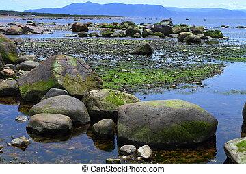 roccioso, linea costiera