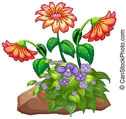 rocha, flor, fundo, bush, branca