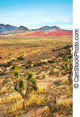 rocher, canyon, rouges, nevada