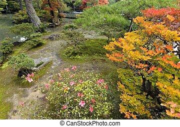 Saison automne jardin japonais jardin saison for Rocher jardin japonais