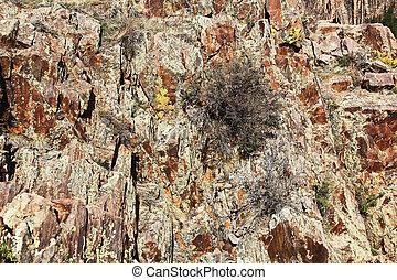 rocher, texture, canyon, arrière-plan noir, gunnison, chaire
