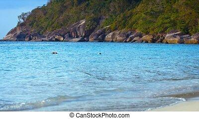 rocheux, baie, exotique, protégé, littoral, boisé