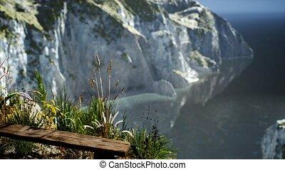 rocheux, herbe, océan, falaise, grand, frais