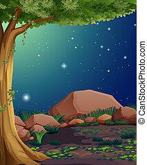 rochoso, floresta