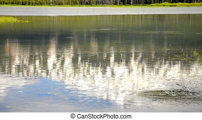 Rock Breaking up a Peaceful Reflect - A rock splashing into...