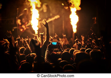 rock concert, music festival