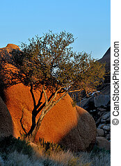 Rock formation at Spitzkoppe