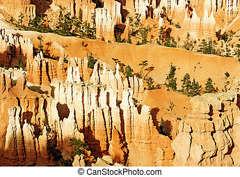 rock formations in Bryce Canyon at sunset