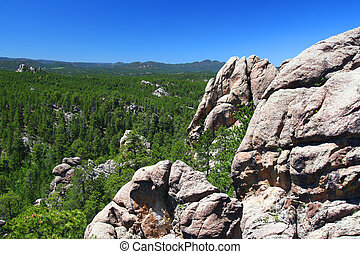 Rock formations scatter the pine forests of Black Hills National Forest in South Dakota.