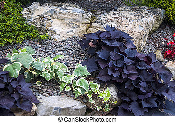 Rock Garden - A rock garden with various plants and flowers