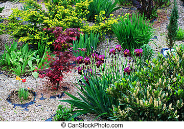 Rock garden - Beautiful rock garden in the yard with...
