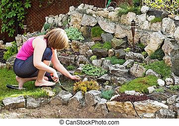 Rock garden in spring - Care over the rock garden in spring