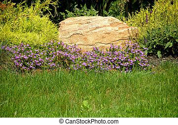 Rock Garden - Rock garden