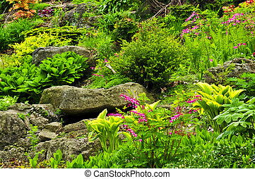 Rock garden with various plants and flowers