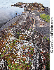 Rock in Oslofjord, covered with colorful mosses